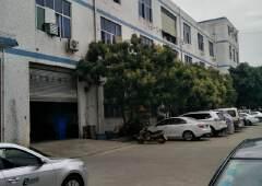 松岗江边一楼厂房460平米带装修出租
