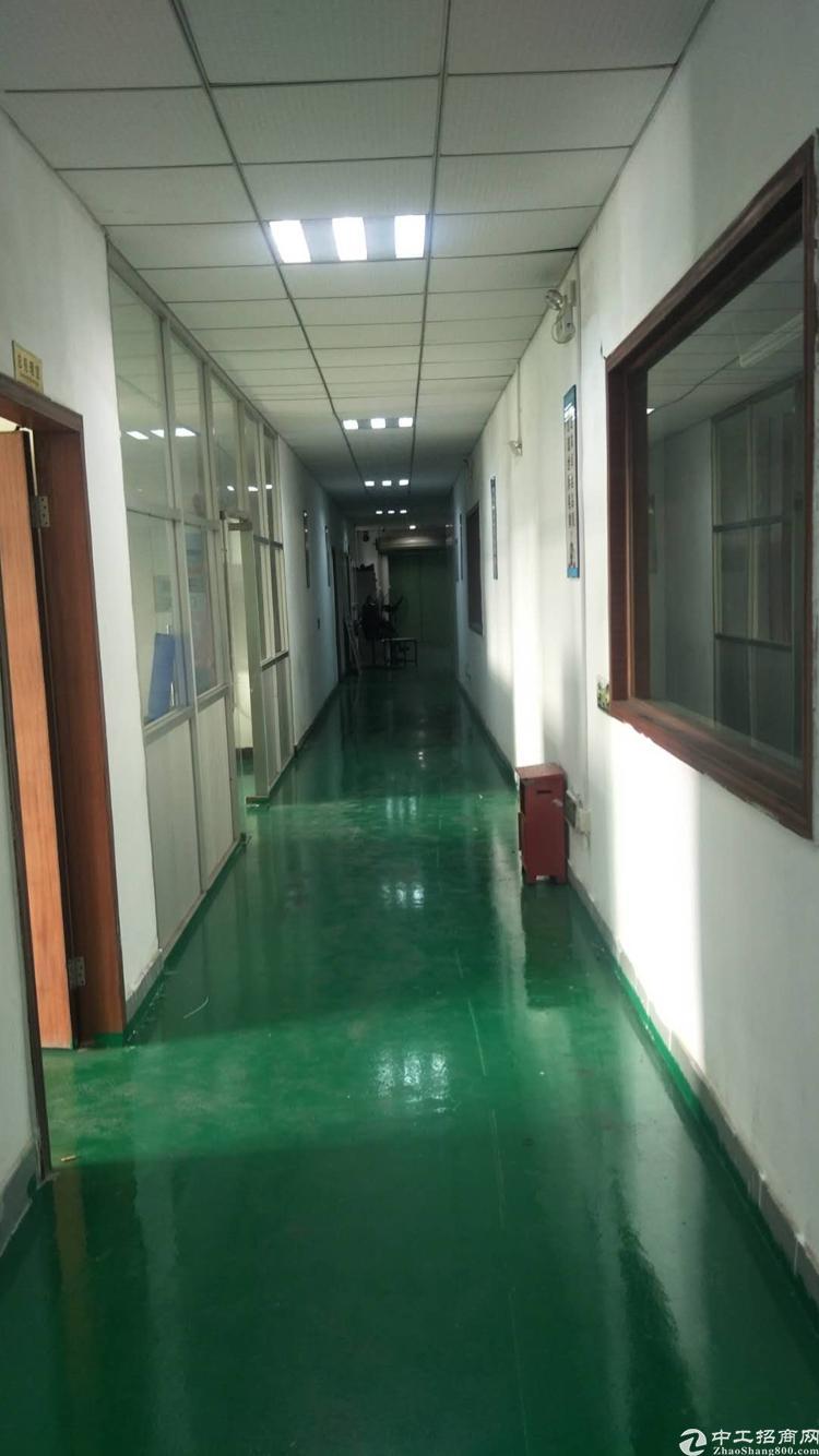 公明松白路边上3楼2300平方带精装修厂房出租-图4