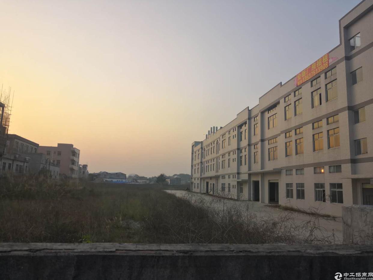 东莞全新独院厂房13000平方