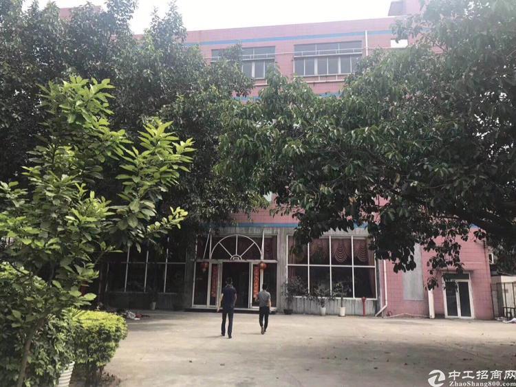 龙华新区观澜福民可做幼儿园场地出租