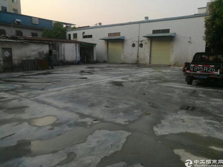 松岗原房东经典钢构1000平方,400平空地
