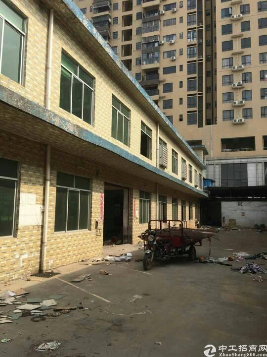 光明新区独院1700平方招租-图2