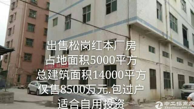出售龙华独门独院红本厂房。适合投资自用。-图3