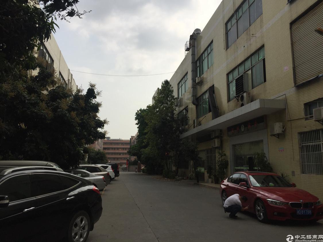 观澜松元新出一楼1000平方一楼。