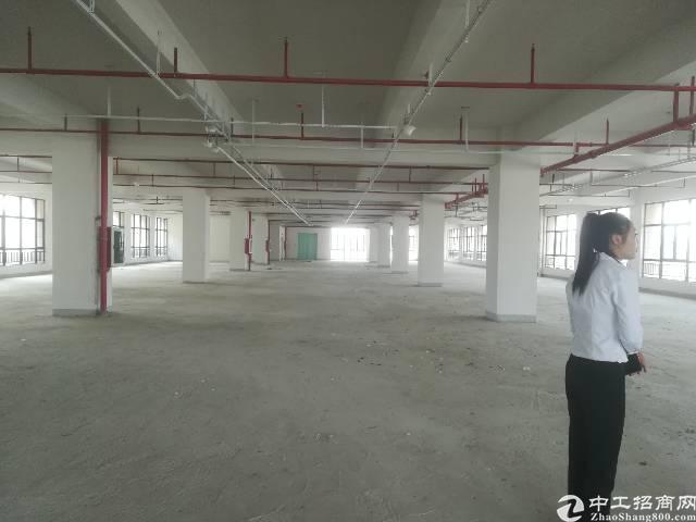 公明新出一楼厂房1500平米