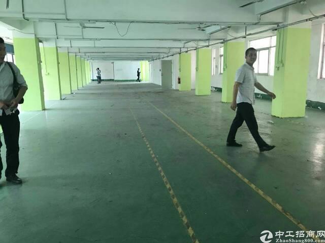 4000平方米带豪华装修厂房出租