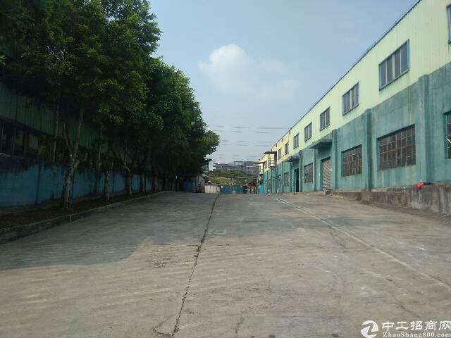 观澜高新技术产业园钢结构厂房20000平米出租