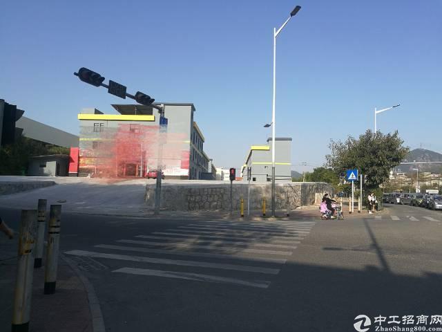 横岗中心城区附近独门独栋厂房5栋14600平,大小可分租