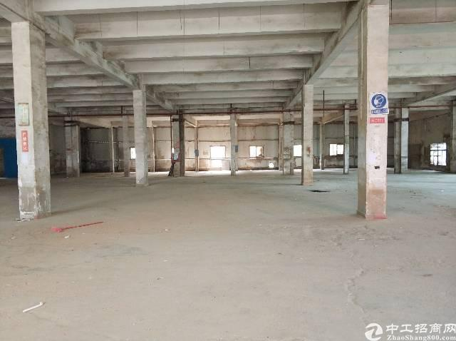 龙岗区横岗镇保安社区会员路边一楼厂房空出3000平交通便利