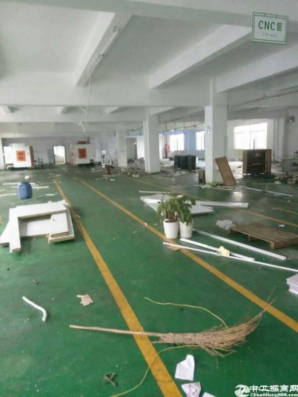 惠州惠阳新圩长布大工业区内1800平方出租