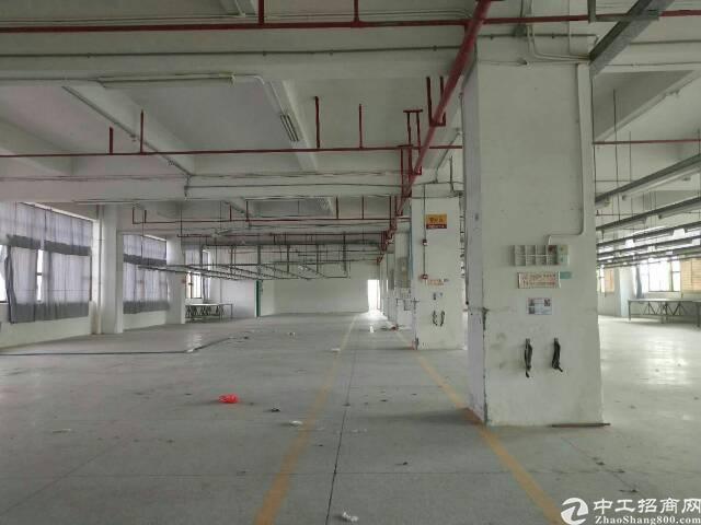 坪山新区红本厂房6万平方招租!每层1450平方分租