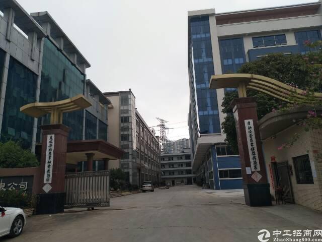 东部快线边上原房东独院标准厂房带独立办公楼低价出租