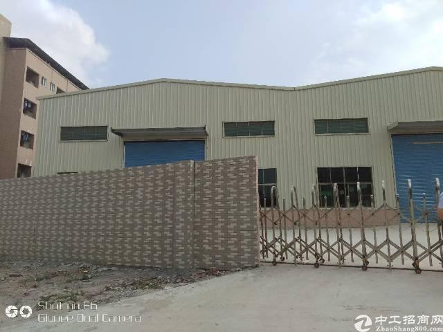 新出标准钢构厂房招租