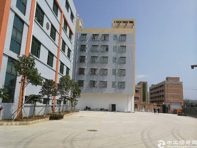 惠阳新圩全新厂房独院出售-图3