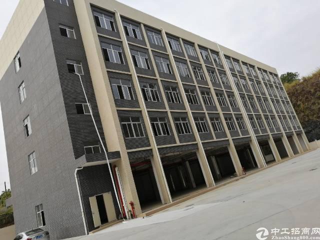 原房东全新园区厂房出租总面积20000平方可分租
