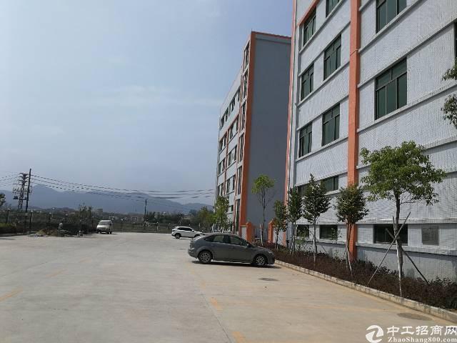 惠阳新圩全新厂房独院出售-图2