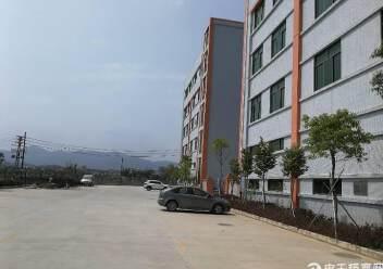 惠阳新圩全新厂房独院出售图片2