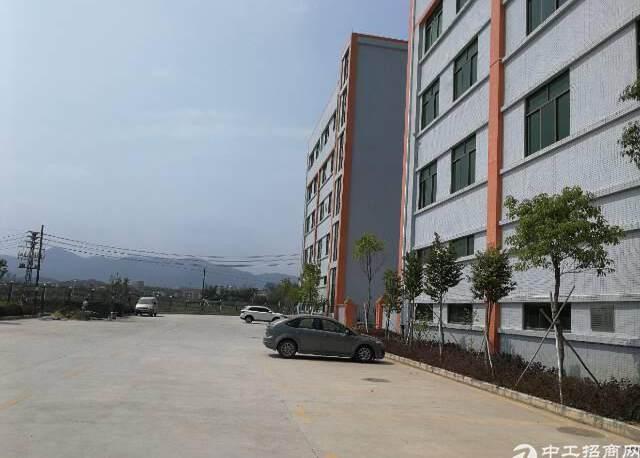 惠阳新圩全新厂房独院出售