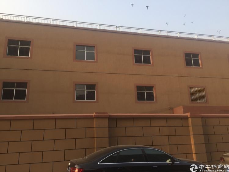 原房东坪山区新出一楼500平带装修
