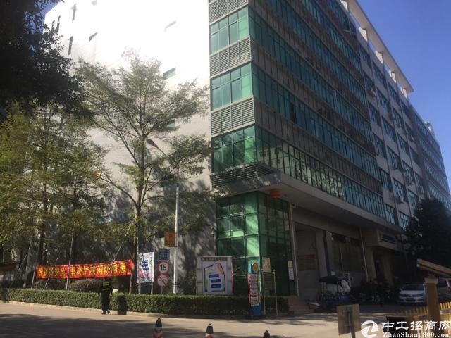 清溪原房东3000平米花园式实际面积厂房出租