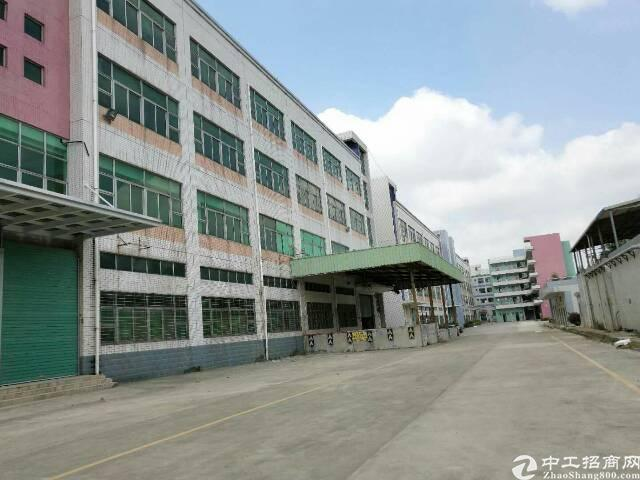 坪山新区石井比亚迪旁二楼带装修厂房1300平米
