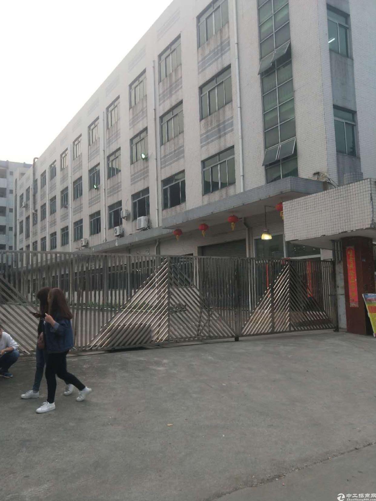 大宁独院厂房13500平米可分租