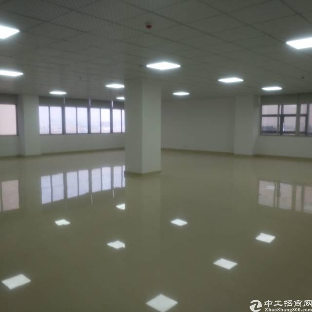 福永沿江高速出口精装写字楼特价出租