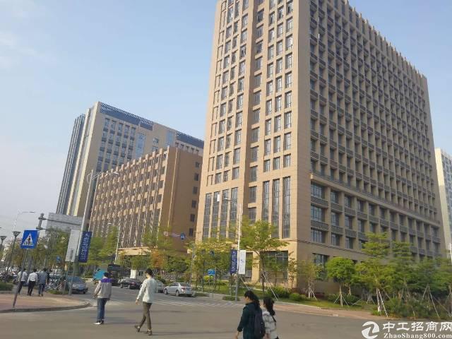 公明带红本高档酒店8层总面积7040平米火爆招商