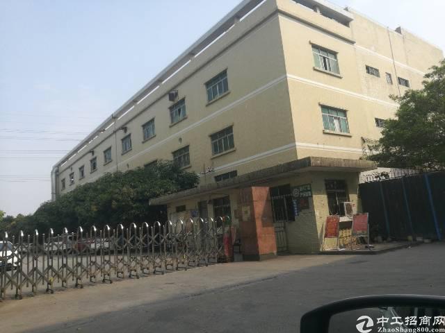 石碣镇新城区独门独院标准厂房4300㎡,宿舍办公1900㎡。