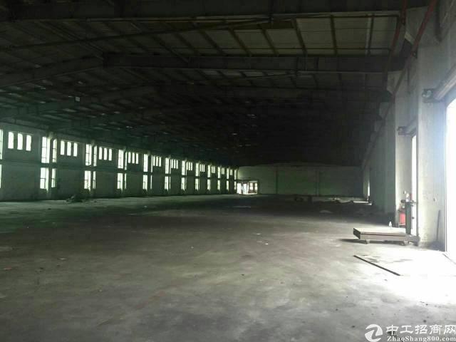 沙头 原房东钢构厂房3800平7米高出租