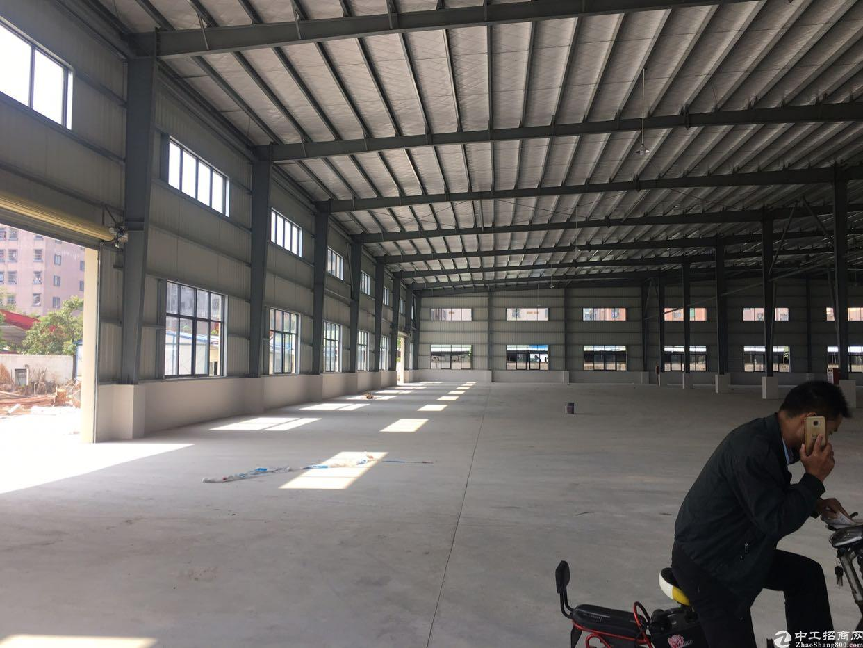 东莞市高埗镇全新独门独院钢结构厂房出租