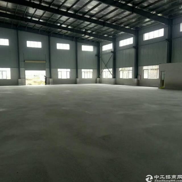 高埗镇新出单一层钢构17000方 滴水9米 大小可分租价格优