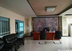 大朗毛织市场中心地段新出豪华装修办公室