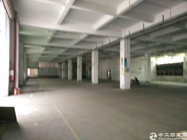 公明龙大高速出口处新出一楼1200平
