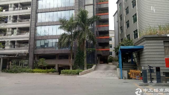 广州新出独门独院厂房带装修厂房出租了