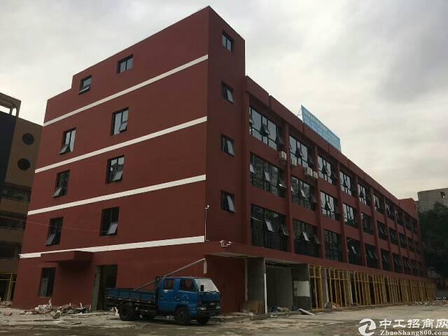 布吉高级中学旁新出独院电商园2万平方出租