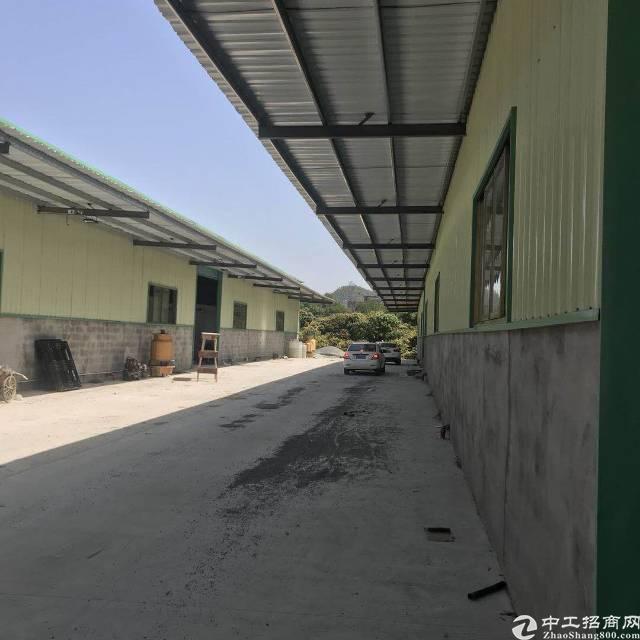 惠州市惠城区小金口2400平方独院单一层低价出租