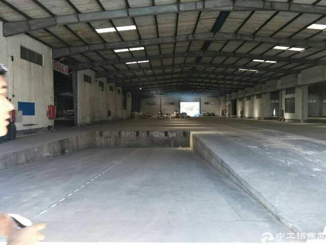 惠州龙溪镇新出钢结构独门独院厂房