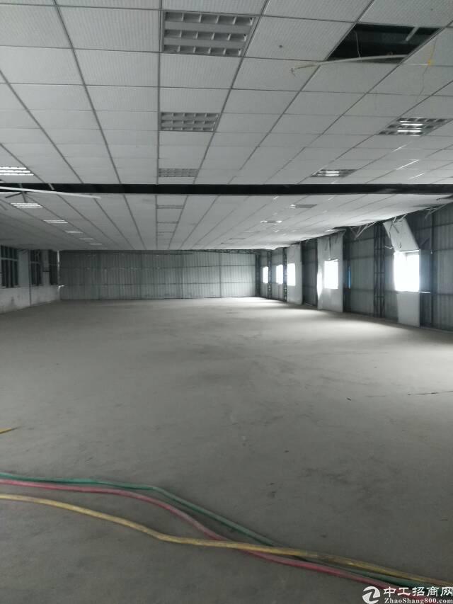 石碣新出楼上900平钢构厂房