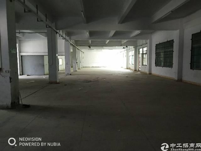 樟木头镇裕丰管理区新出标准厂房一楼1400平方,现成办公室