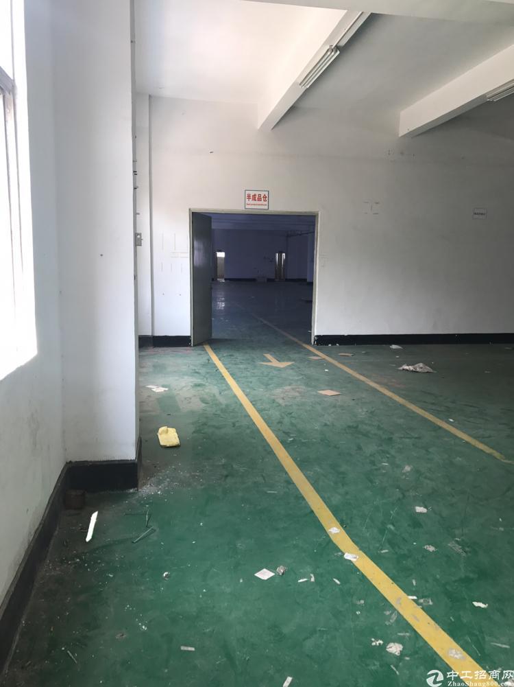 横岗新出独院厂房面积9210平带装修可分租-图3