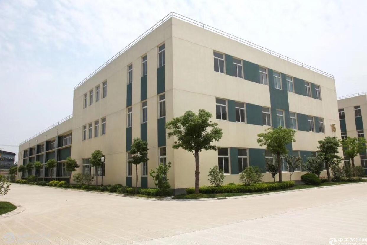 万江原房东10000平米独院