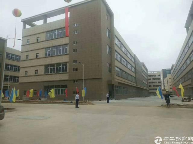 新出标准楼房1-4层  适合各种企业 上市公司的首选