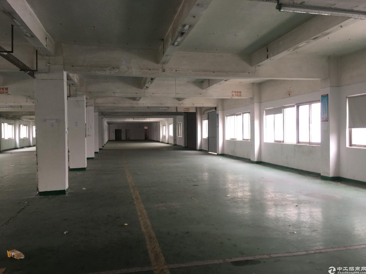 臣田厂房仓库出租离107国道不到100米