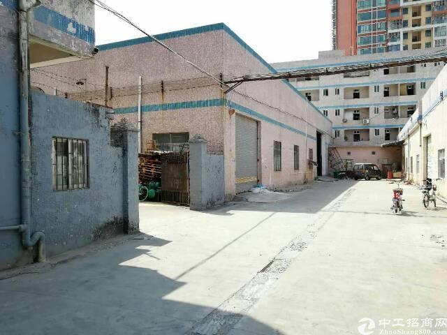 横岗新出 钢构厂房2000平远离居民区 适合噪音 五金行业