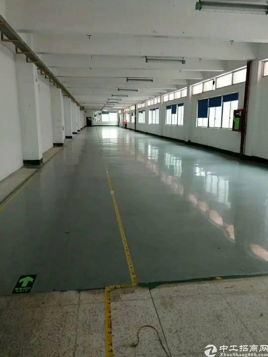 福永重庆路边上,3200平方带精装修厂房-图3