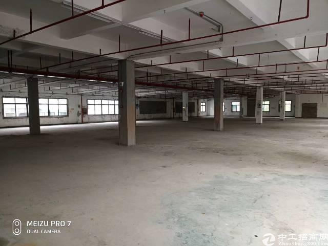 福永新出单一层钢构三栋约14800平米,高度10.5米租金4