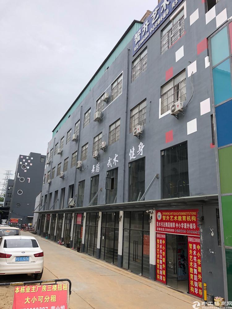 西乡刚出整栋4500平方仓库厂房出租