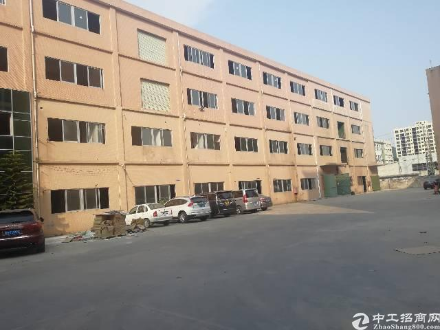 虎门大宁一楼1200平米实际面积出租