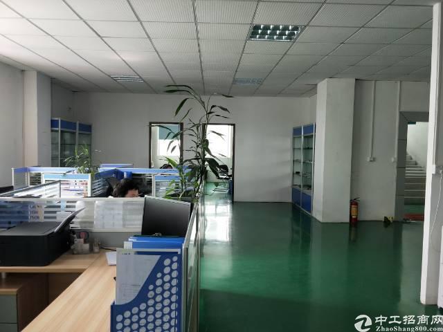 公明3楼1200平米租金15元带办公室精装修-图6